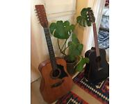 Guitar acoustic 12 String classical
