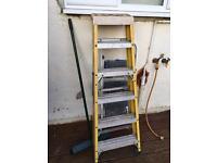Step ladder £30