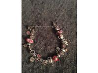 Genuine pandora bracelet and 21 charms