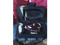 Ferris pocket Trumpet for sale purple and gold