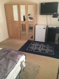 Studio double room with kitchen and shower (bedsit)
