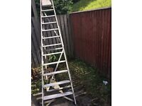11 Rung Ladder For Sale