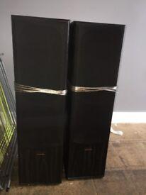 Powerful Amp + 2 speakers