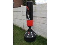 Turner Max 6ft Free Standing Punch Bag