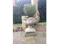 Plant pot and conifer, ornate leaf design with pedestal, nice weathered condition