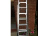 Youngman High Quality loft ladder,