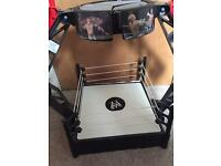 WWE wrestling ring and WWE rumblers wrestling ring truck