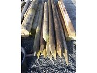 Tree Stakes Various Sizes 12 Number