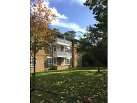 THREE BED FLAT ON FAYLANDS AVENUE, TOOTING SW16 - PART DSS ACCEPTED