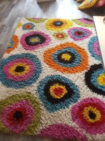 Large shaggy rug and 7 multi colored filled cushions to match
