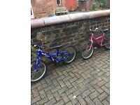 Boys and girls bike