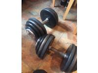 2X 36kg dumbells