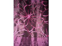 Beautiful purple curtains