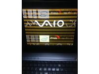 Sony Vio laptops
