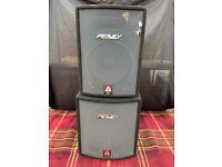 2 Peavey XT series speakers