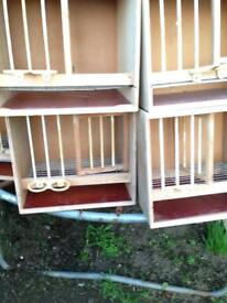 Pigeon nest boxes & baskets