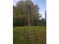 Vintage Step Ladder - Extra Tall