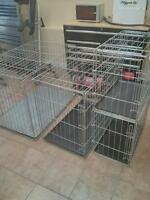 Dog cages crates
