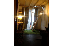 Double Room available in Fountayne Road Warehouse