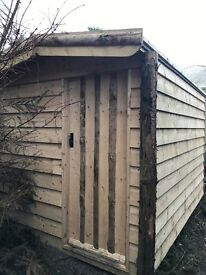 Beautiful shed with tongue and groove panelling inside