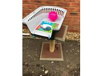 Cat scratch post , carrier and play ball