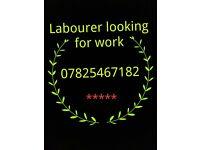 good labourer/handyman or labourers/handymen available now
