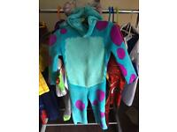 Sully suit from Monsters Inc