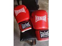 Geezer red 16oz boxing gloves