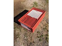 Kerbl poultry crate 95x57x24cm - used once!