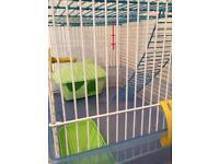 Hamter cage