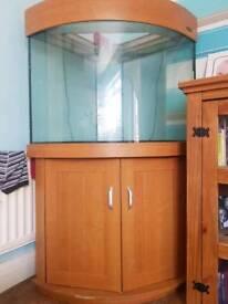 330 litre aqua one corner fish tank