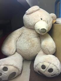 Giant man size teddy bear brand new birthday present