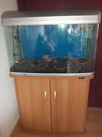 Fish tank, cabinet and accessories £150