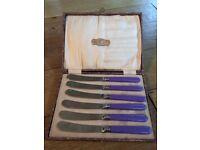 Set of six purple/blue handled butter knife set