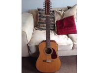 Fender 12 String Acoustic cd160se Electro-Acoustic Guitar, Natural Finish