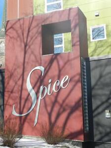 """SPICE"" CONDO: SPACIOUS 1 BEDROOM CLOSE TO DOWNTOWN HALIFAX"