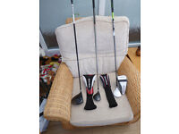Golf Clubs Job Lot Wilson Cart Bag and various clubs Callaway/Cobra/Taylor Made.