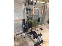 Golds multi gym