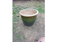 Large green plant pot