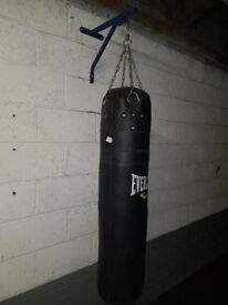 Everlast punch bag, wall mount and Gloves