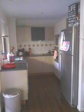 KITCHEN - MUST SELL! New kitchen arriving! Good clean condition. Mooloolaba Maroochydore Area Preview