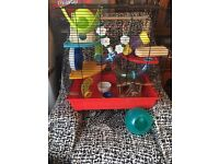 Excellent Condition Small Pets XL Cage For Sale, Ideal For Hamsters + Plus Loads Of EXTRAS