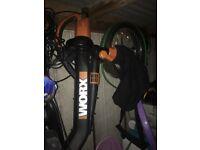 Worx blower and vac