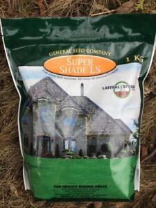 Dense shade grass seed, and other mixtures for your various needs: grass seed for sandy soil, drought resistant grass...