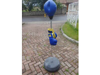 Boxing Free Standing Punch Bag and Gloves Children
