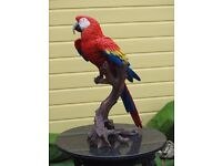 """Very Large 67cm (26"""") Resin Red Macaw Parrot Wild Tropical Bird Vivid Arts"""