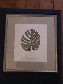 Gorgeous print and frame