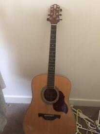 Crafter dreadknought acoustic