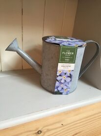 New M&S Flower Shop Forget Me Not Annual Plant in Mock Watering Can Ornament RRP £10 Gift Present