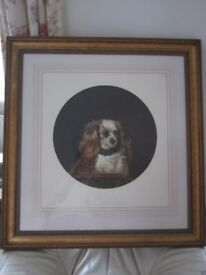Cavalier King Charles Spaniel - Large Engraving Painting Print Art